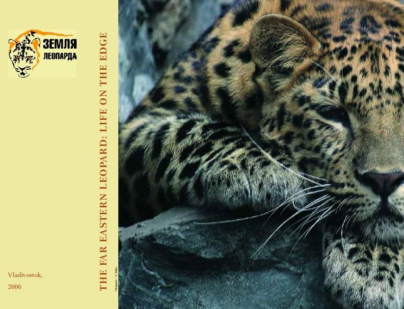 The Far Eastern Leopard: Life on the Edge