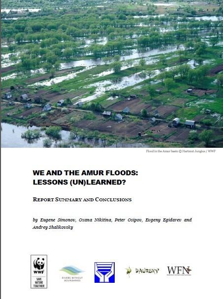 We and the Amur Floods: Lesson (Un)Learned?
