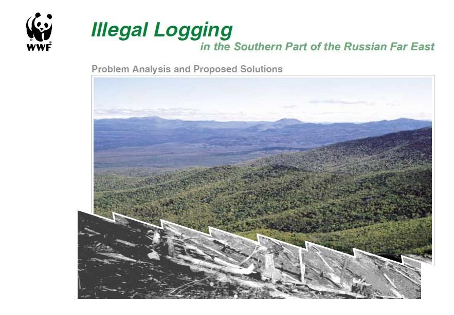 Illegal Logging in the Southern Part of the Russian Far East