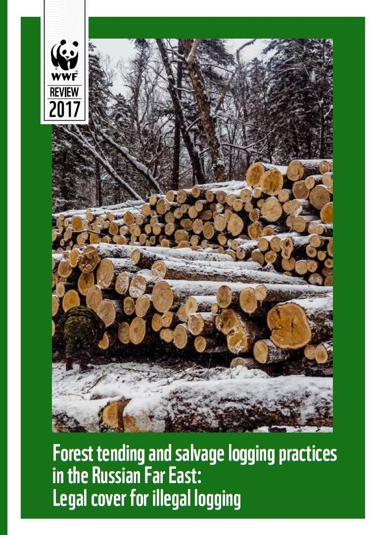 Forest tending and salvage logging practices in the Russian Far East: Legal cover for illegal logging.