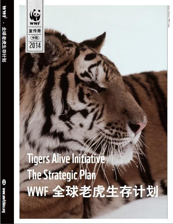 Tigers Alive Initiative The Strategic Plan