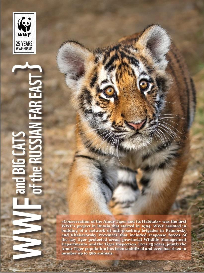 WWF and Big Cats of the Russian Far East