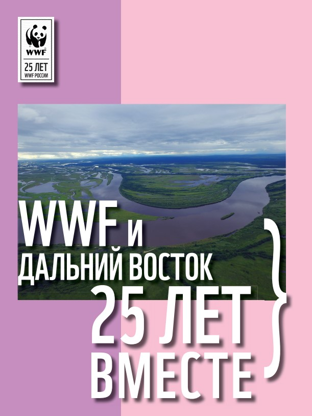 wwf_leaflet_25_preview.jpg