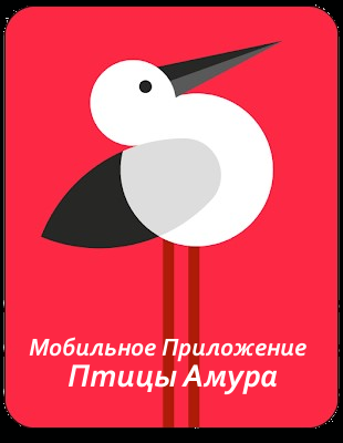 web_birds_amur_project.png