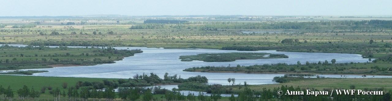 header_ecoreg_wetlands_ru.jpg
