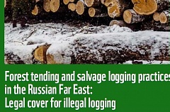 Legal cover for illegal logging.